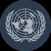 Simulação da ONU