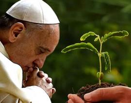 Hoje é o Dia Mundial de Oração pelo Cuidado da Criação
